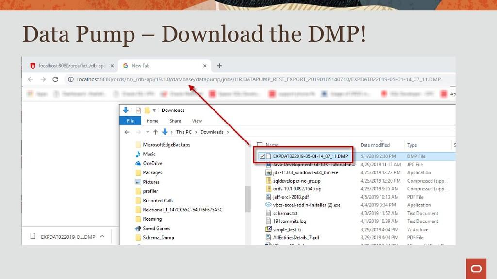 Data Pump – Download the DMP!