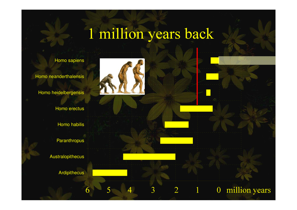 1 million years back 1 million years back Homo ...
