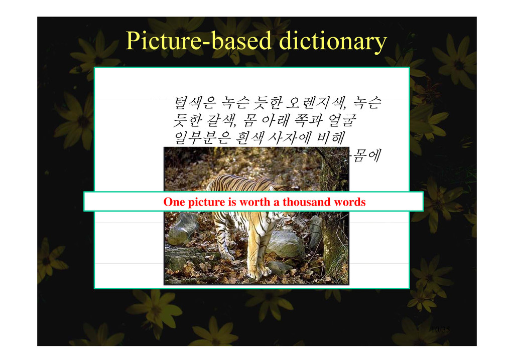 Picture-based dictionary Example 호랑이털색은 녹슨 듯한 오...