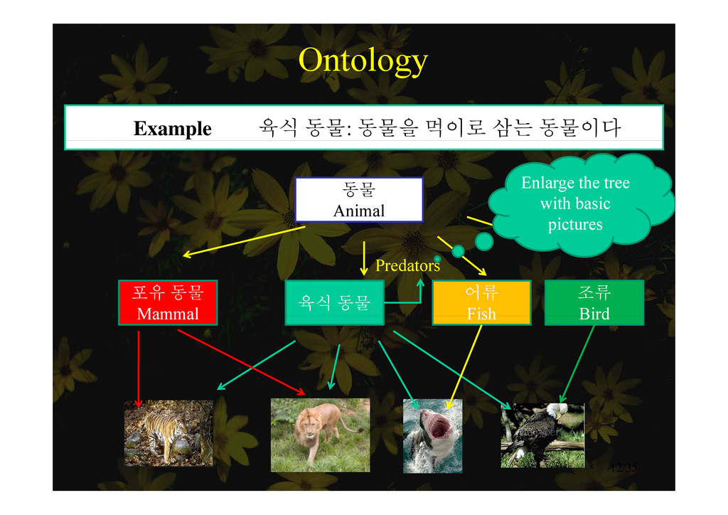 Ontology Example 육식 동물: 동물을 먹이로 삼는 동물이다 동물 Enla...
