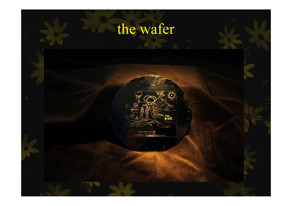 the wafer the wafer 19/36
