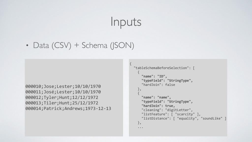 • Data (CSV) + Schema (JSON) Inputs 000010;Jose...