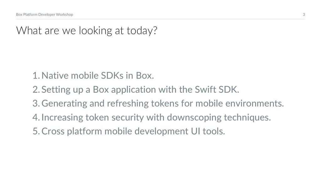 3 Box Platform Developer Workshop 1.Native mobi...