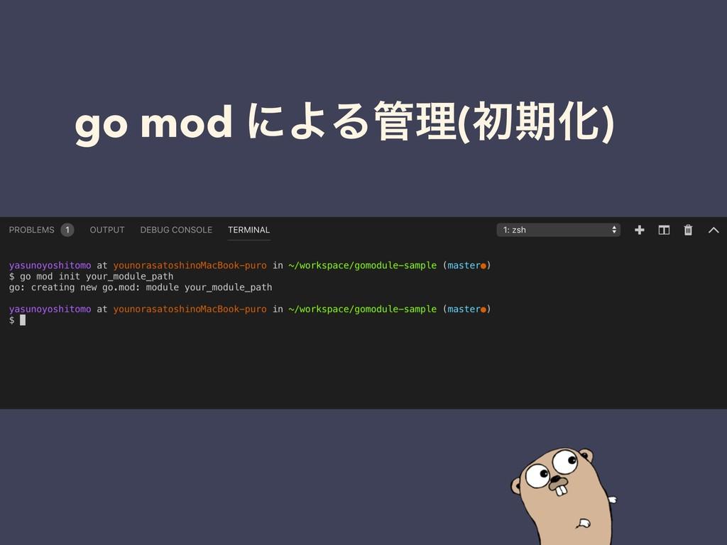 go mod ʹΑΔཧ(ॳظԽ)