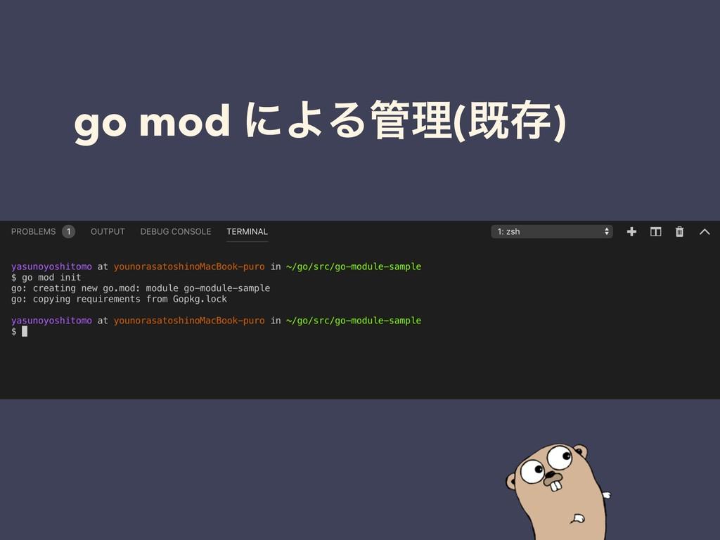 go mod ʹΑΔཧ(طଘ)