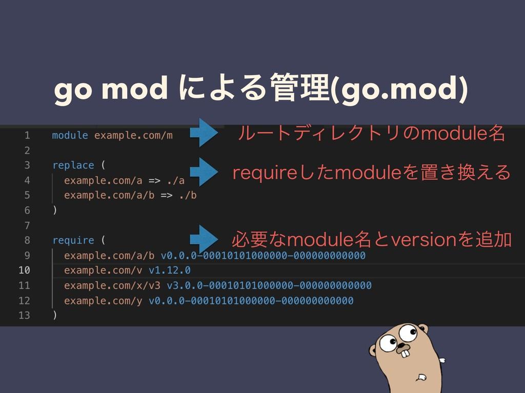 go mod ʹΑΔཧ(go.mod) ϧʔτσΟϨΫτϦͷNPEVMF໊ SFRVJSF͠...
