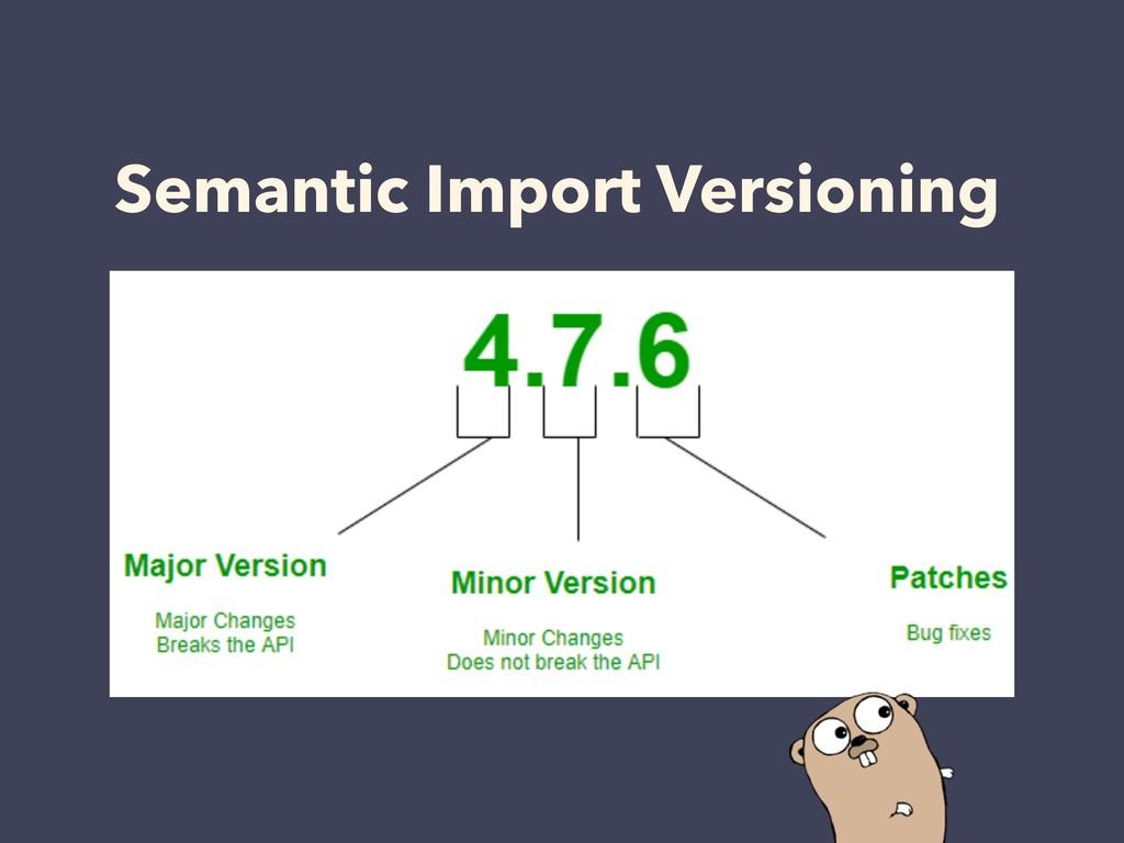 Semantic Import Versioning