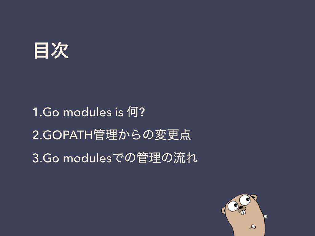 1.Go modules is Կ? 2.GOPATHཧ͔Βͷมߋ 3.Go mod...