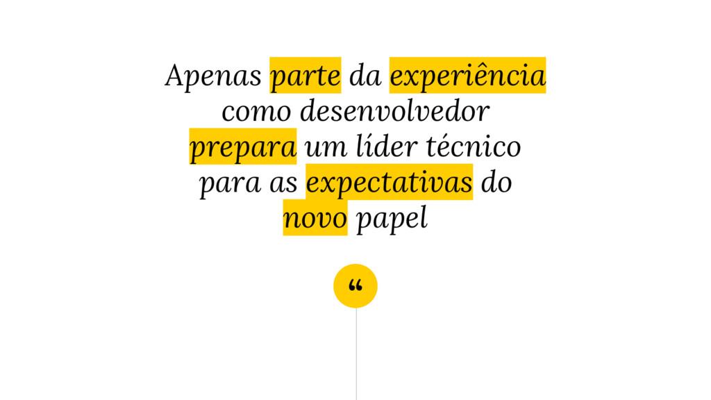 """"""" Apenas parte da experiência como desenvolvedo..."""
