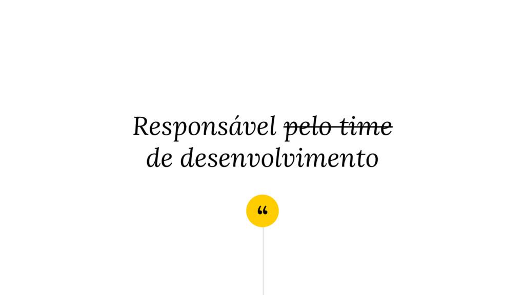 """"""" Responsável pelo time de desenvolvimento"""