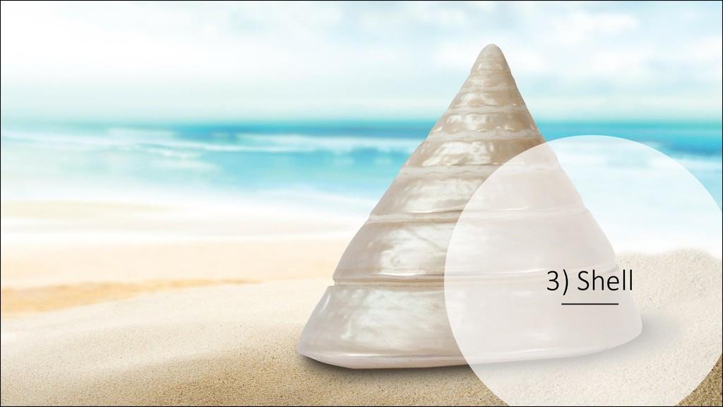 @ManfredSteyer 3) Shell