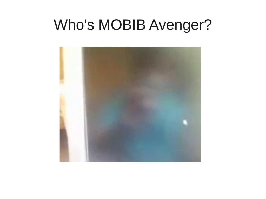 Who's MOBIB Avenger?