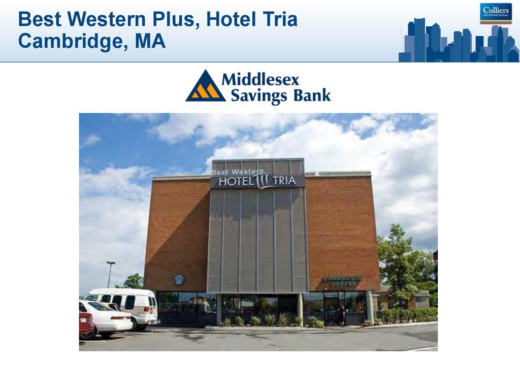 Best Western Plus, Hotel Tria Cambridge, MA