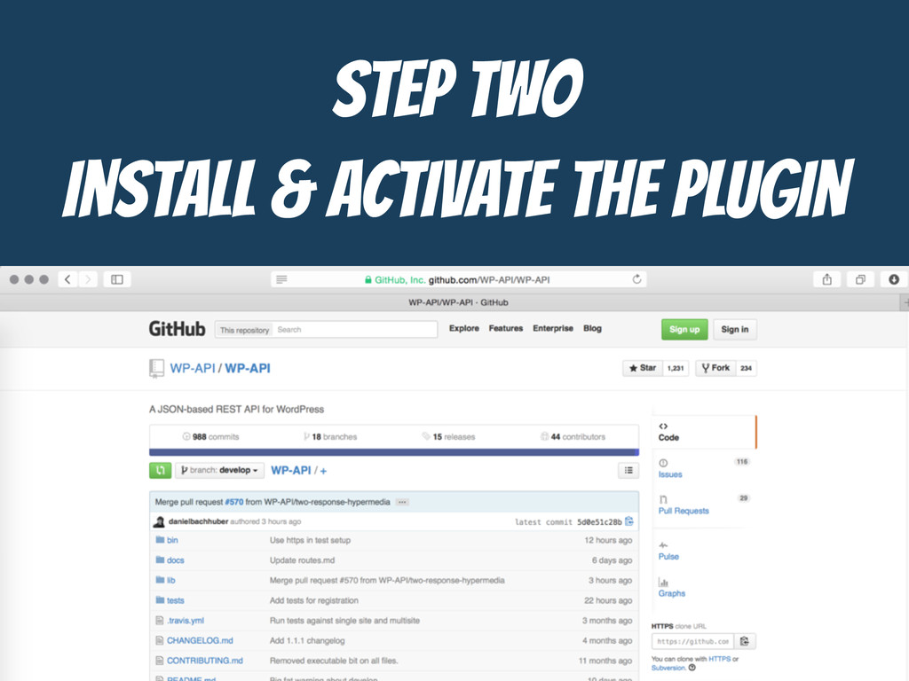 STEP TWO  Install & Activate the Plugin