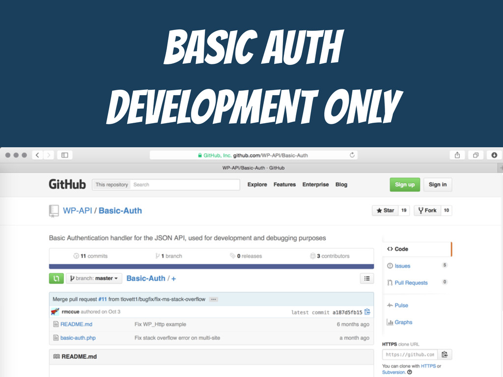 BASIC AUTH  DEVELOPMENT ONLY