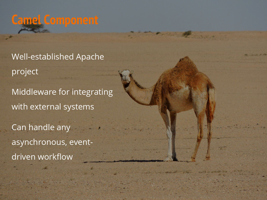 Camel Component Well-established Apache project...