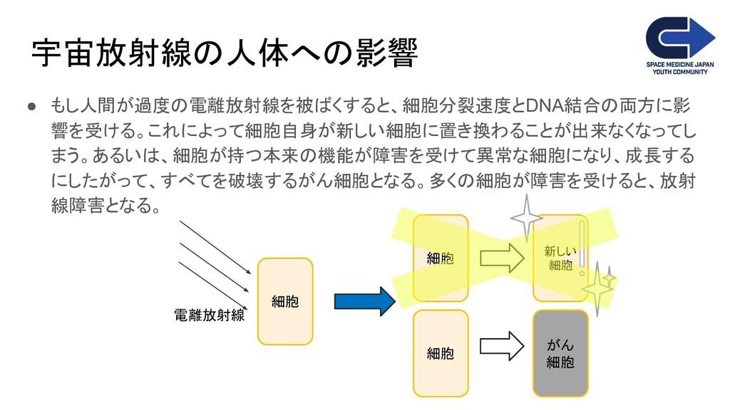 宇宙放射線の人体への影響 ● もし人間が過度の電離放射線を被ばくすると、細胞分裂速度とDNA結...