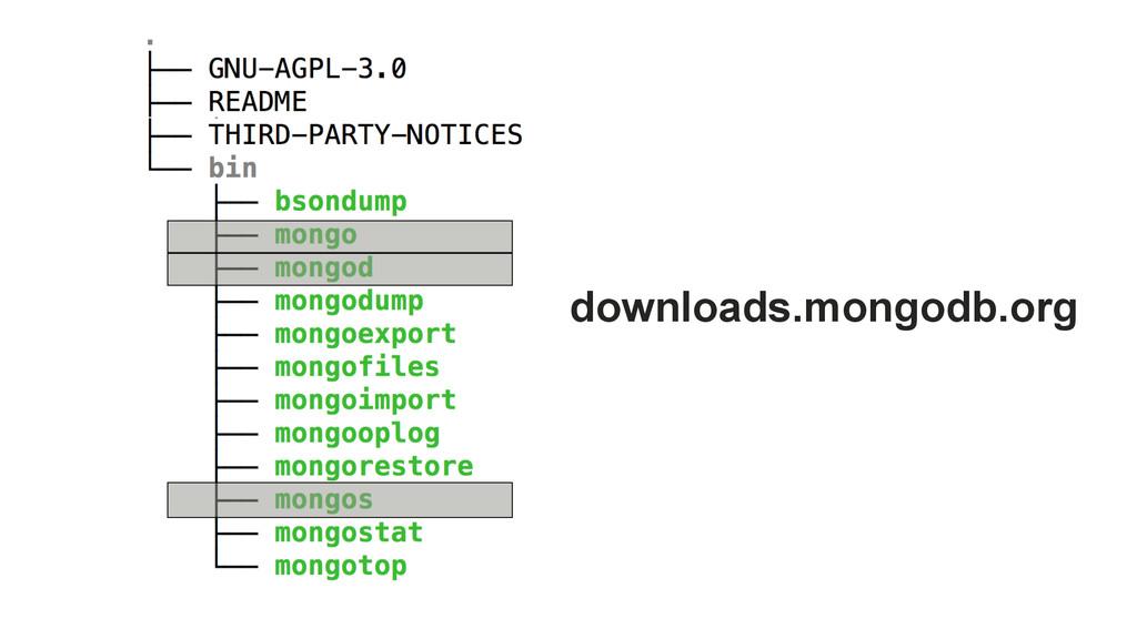 downloads.mongodb.org