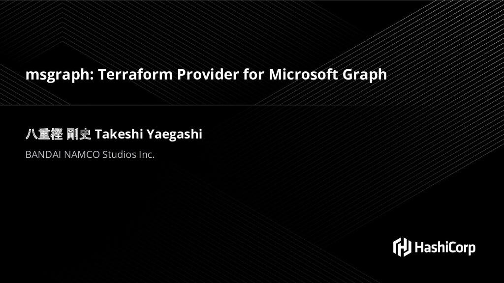 msgraph: Terraform Provider for Microsoft Graph...