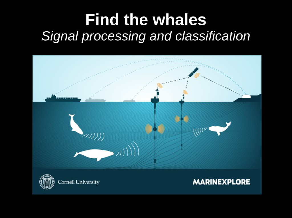 Find the whales Signal processing and classific...