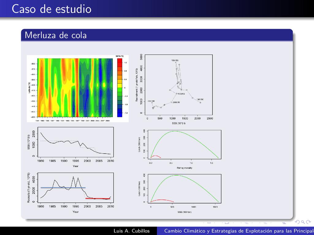 Caso de estudio Merluza de cola Luis A. Cubillo...