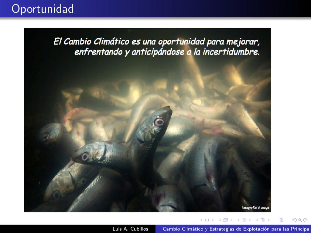 Oportunidad Luis A. Cubillos Cambio Clim´ atico...