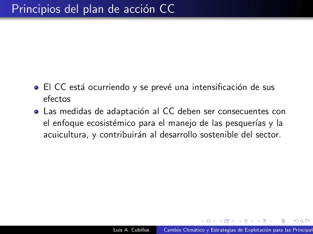 Principios del plan de acci´ on CC El CC est´ a...