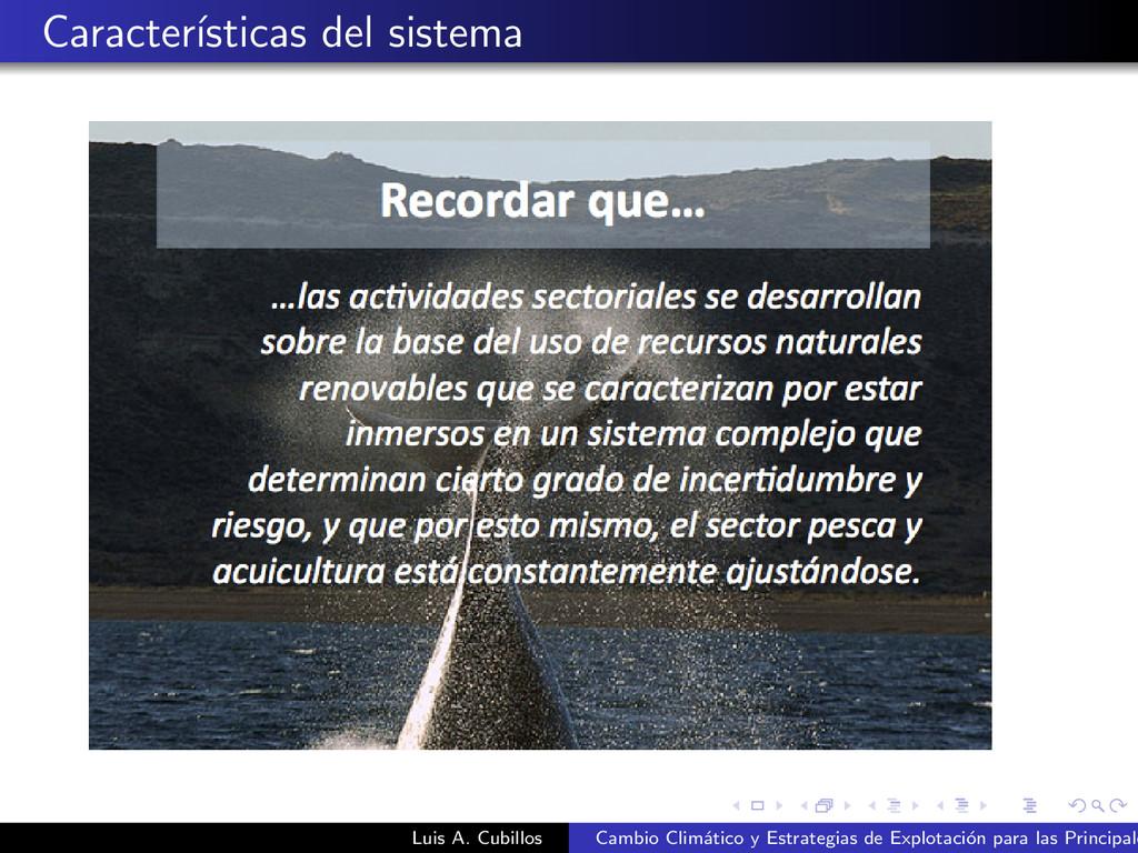 Caracter´ ısticas del sistema Luis A. Cubillos ...