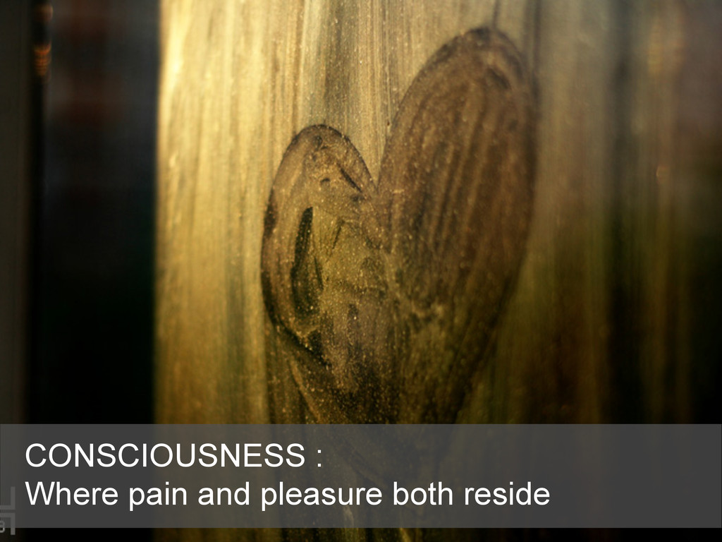 CONSCIOUSNESS : Where pain and pleasure both re...