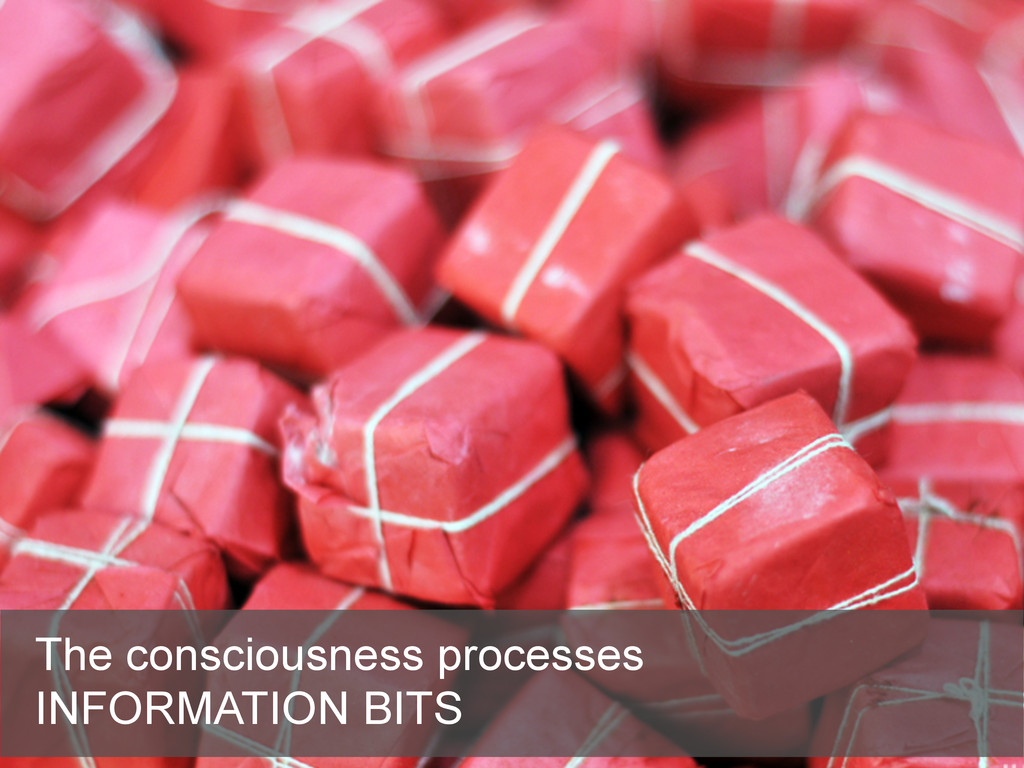 The consciousness processes INFORMATION BITS