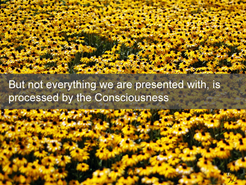 But not everything we are presented with, is pr...