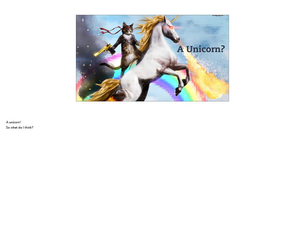 A Unicorn? A unicorn! So what do I think?