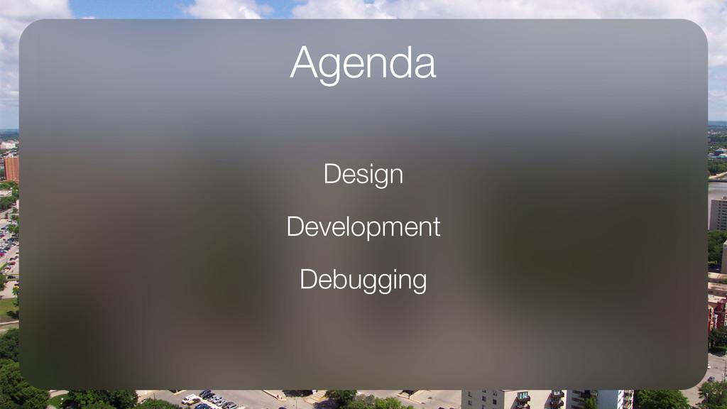 Agenda Design Development Debugging
