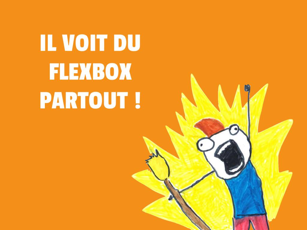 IL VOIT DU FLEXBOX PARTOUT !
