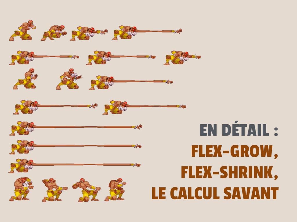 EN DÉTAIL : FLEX-GROW, FLEX-SHRINK, LE CALCUL S...