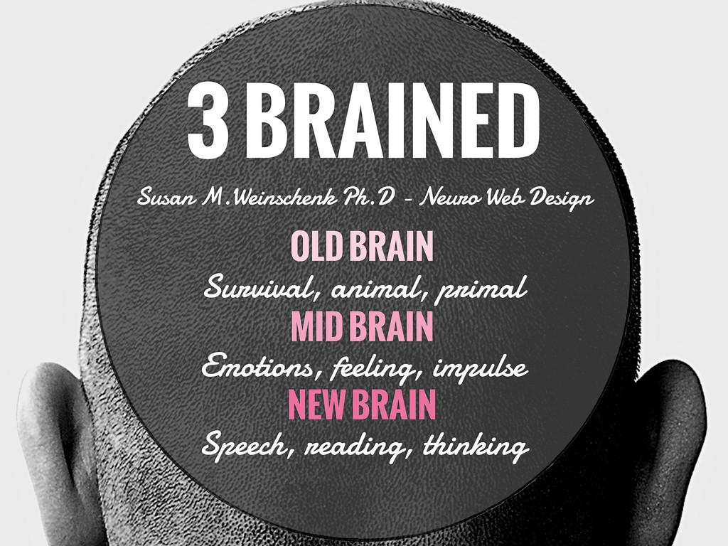 3 BRAINED Susan M.Weinschenk Ph.D - Neuro Web D...