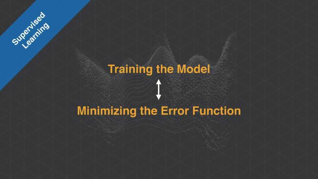 Training the Model Minimizing the Error Functio...