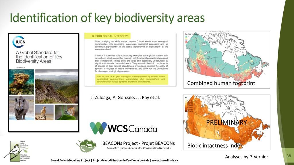38 38 Identification of key biodiversity areas ...