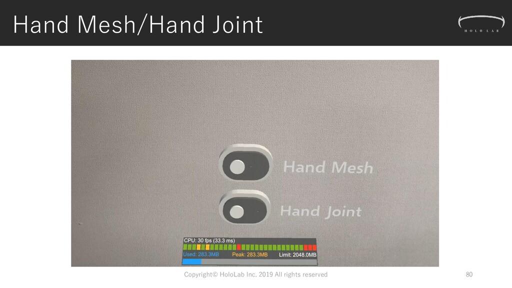 Hand Mesh/Hand Joint Copyright© HoloLab Inc. 20...