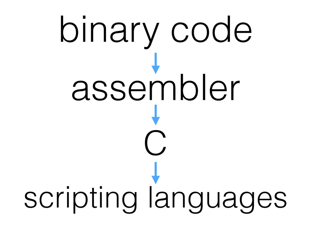 binary code assembler C scripting languages