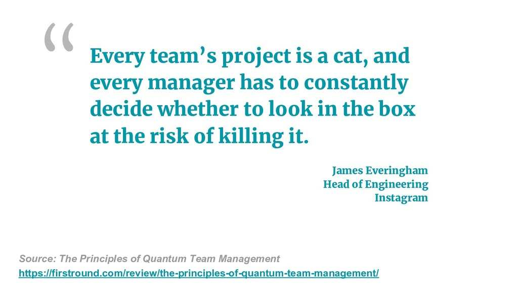 Every team's project is a cat, and every manage...