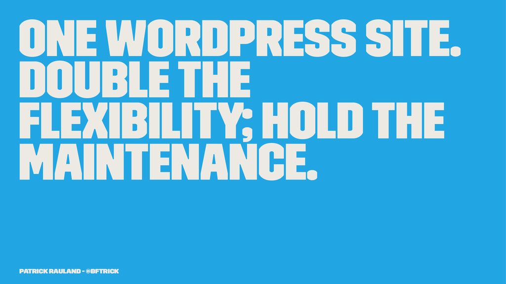One WordPress Site. Double the Flexibility; Hol...