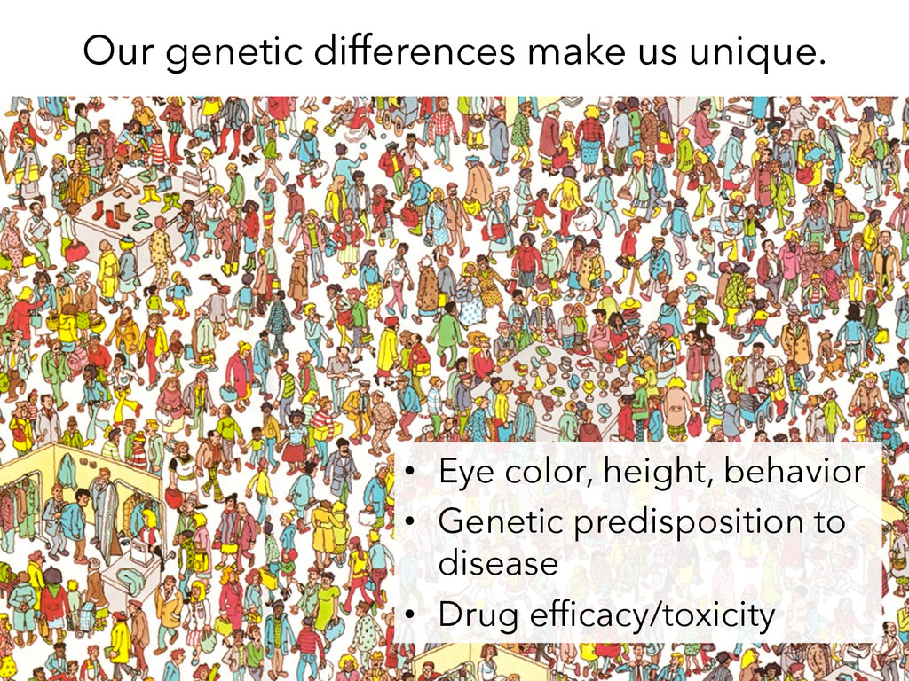 Our genetic differences make us unique. •  Eye ...