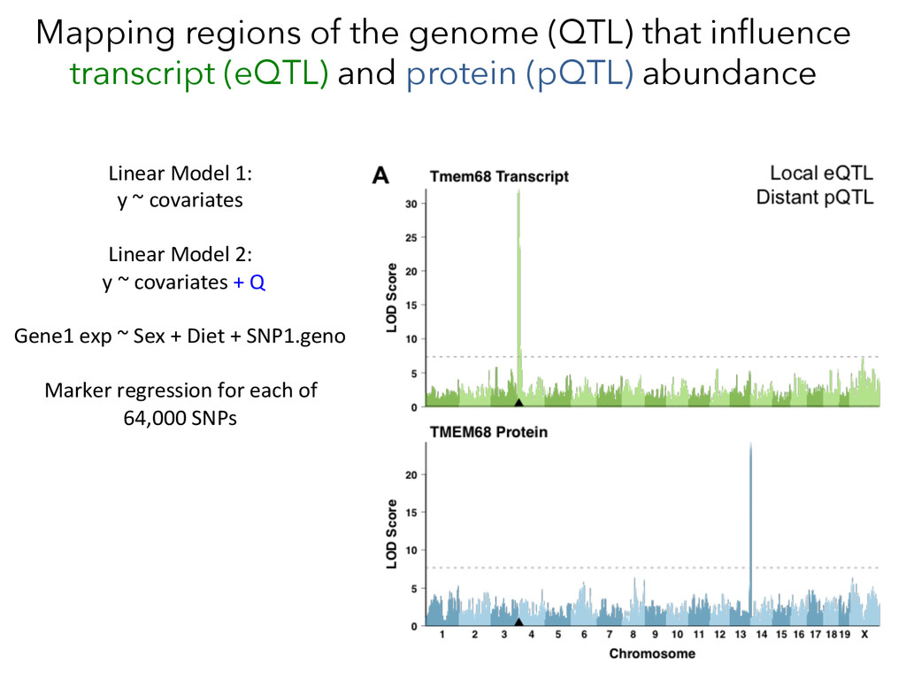 Mapping regions of the genome (QTL) that influen...