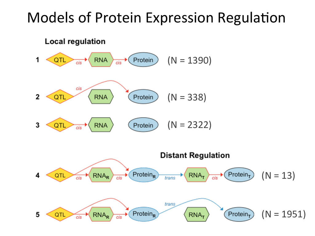Models	