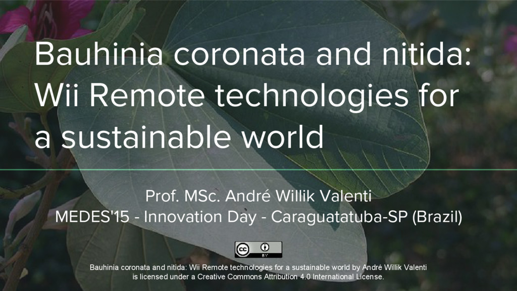 Bauhinia coronata and nitida: Wii Remote techno...