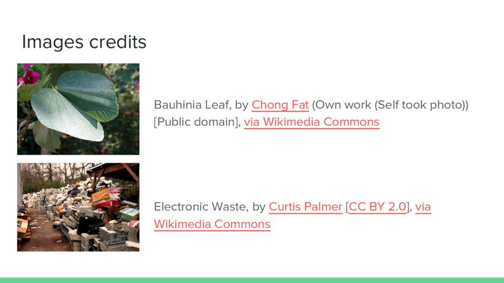 Images credits Bauhinia Leaf, by Chong Fat (Own...