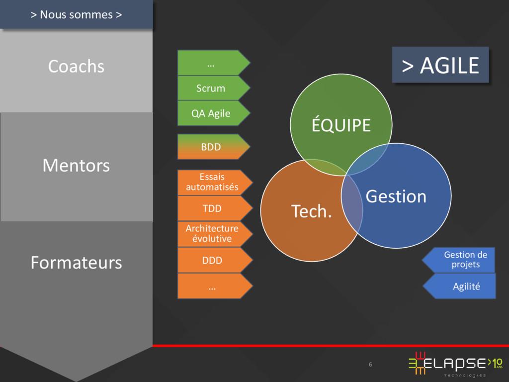 6 > AGILE Coachs Mentors Formateurs Tech. ÉQUIP...
