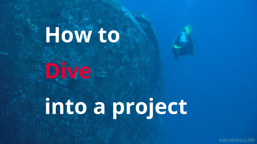 How to Dive into a project Stuart Hamilton © 20...