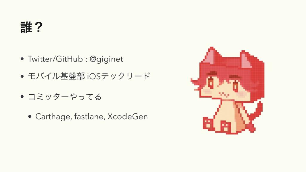 ୭ʁ • Twitter/GitHub : @giginet • ϞόΠϧج൫෦ iOSςοΫ...
